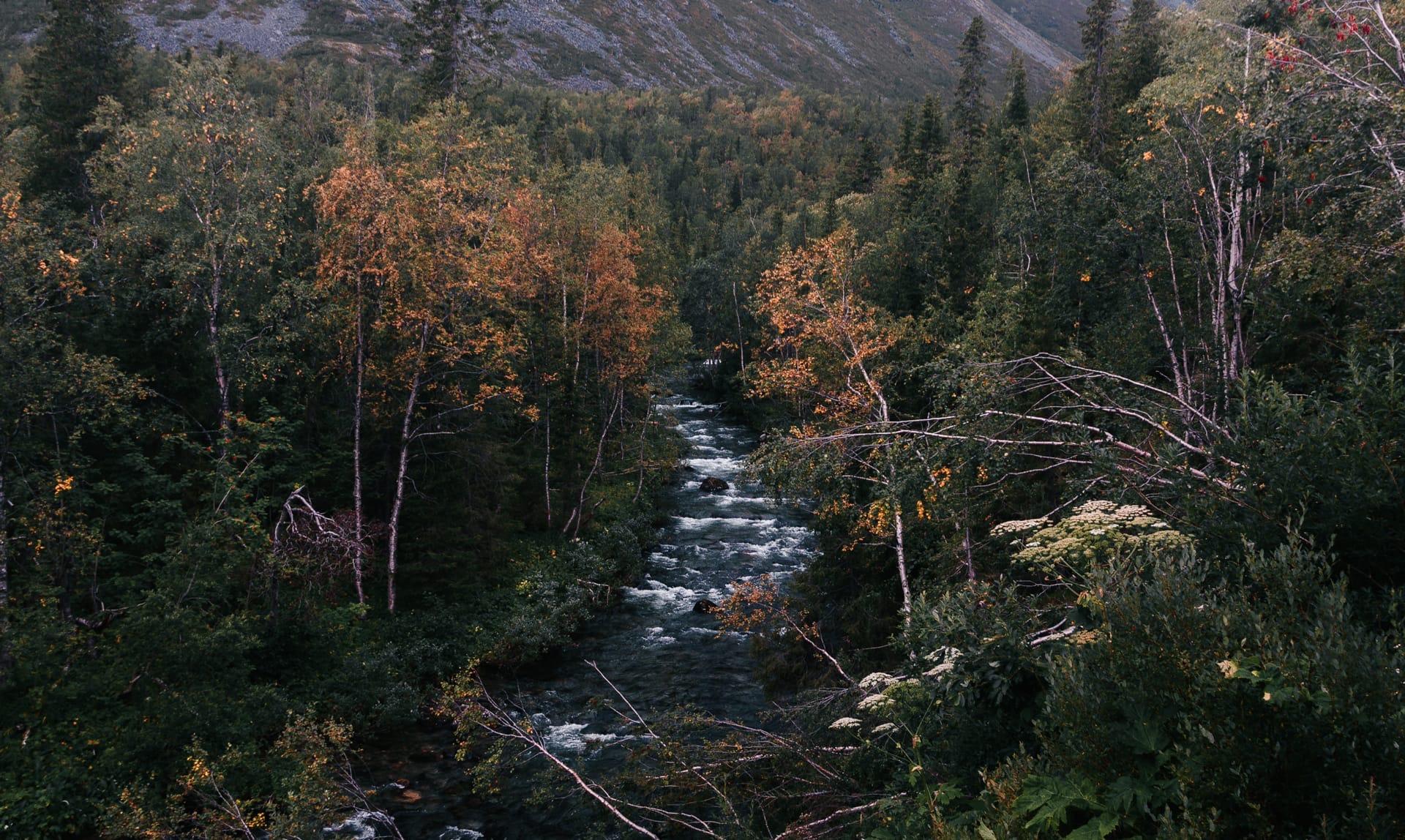 В хибинах наступала осень - Фото