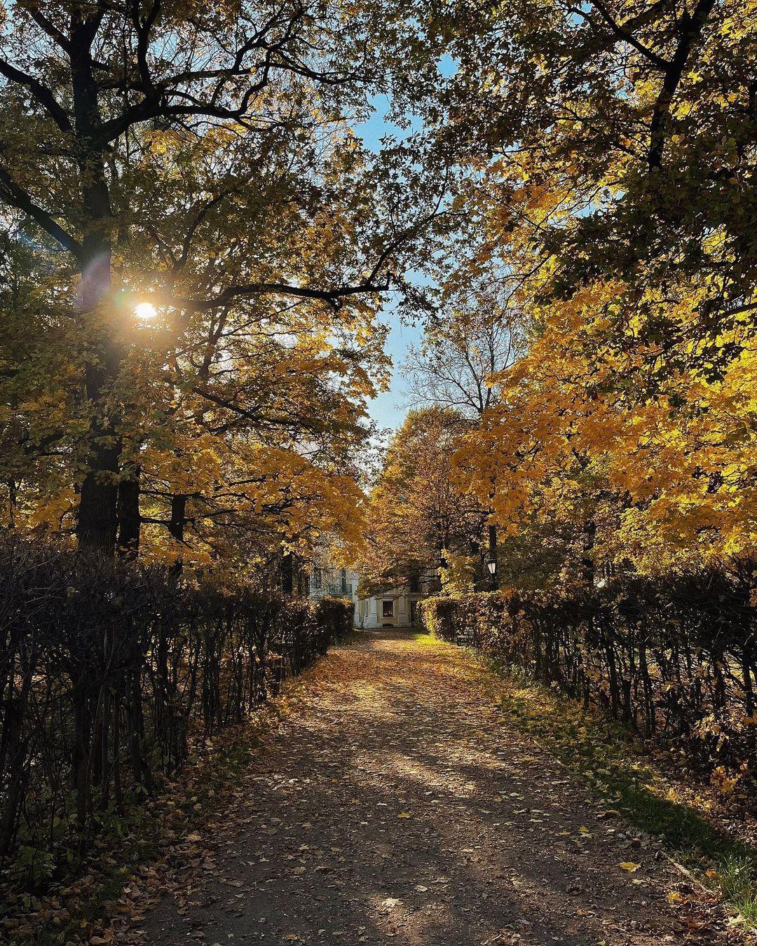 Осень в усадьбе Кусково.