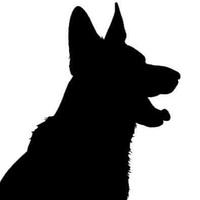Dogs Shadow фото